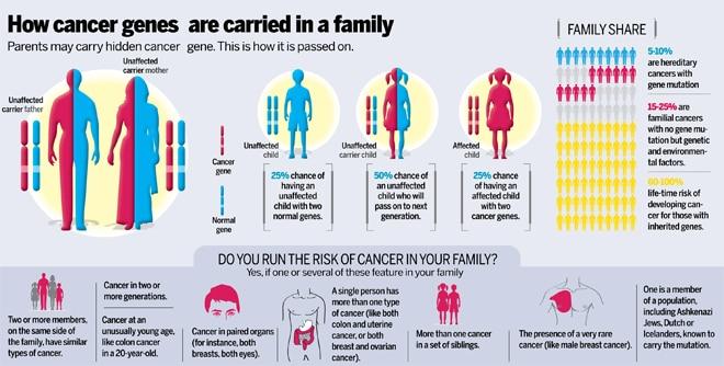familial cancer risk papilloma virus b19