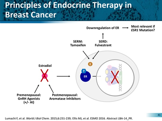 endocrine cancer treatment