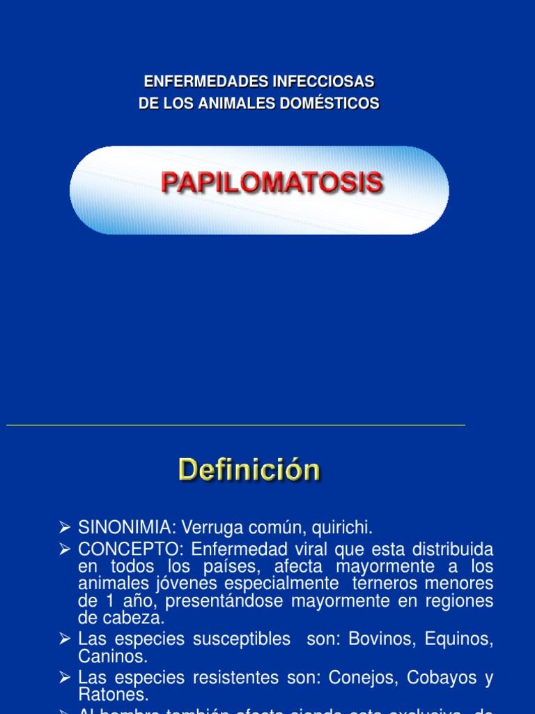 papilomatosis bovina diagnostico instrument pentru tratarea viermilor pentru copii