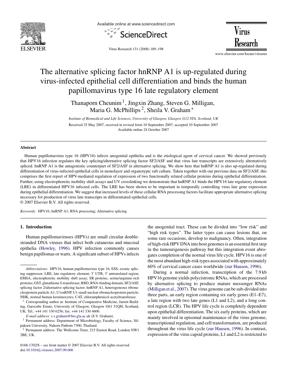 hpv virus stamm 16