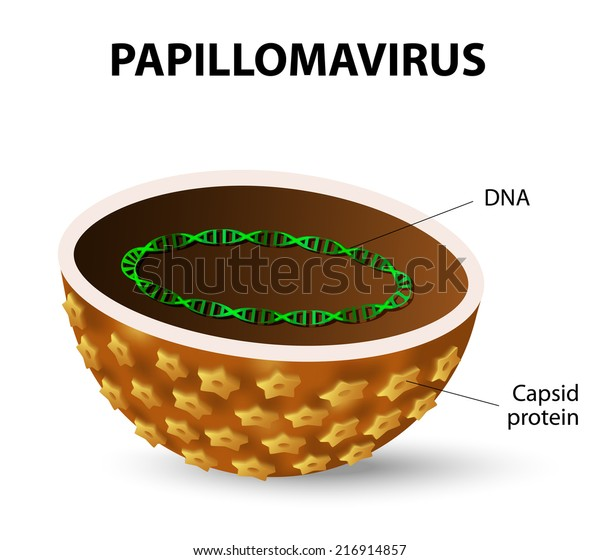 Does hpv that causes cancer cause warts. Hpv that causes cancer and warts - csrb.ro