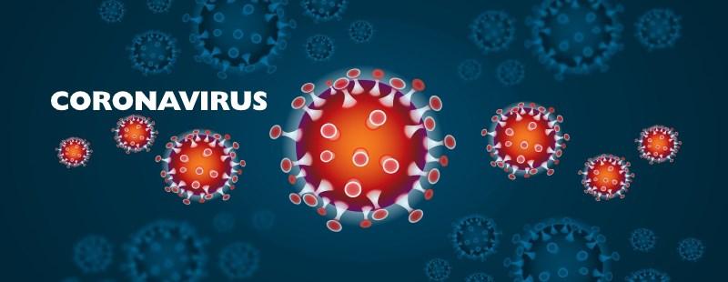 Virusul fergek. Paraziti u kocek priznaky