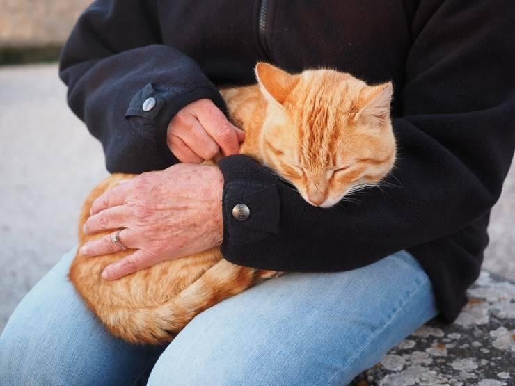 Ce este agranulocitoza - cauze, simptome și tratament - Aritmie June