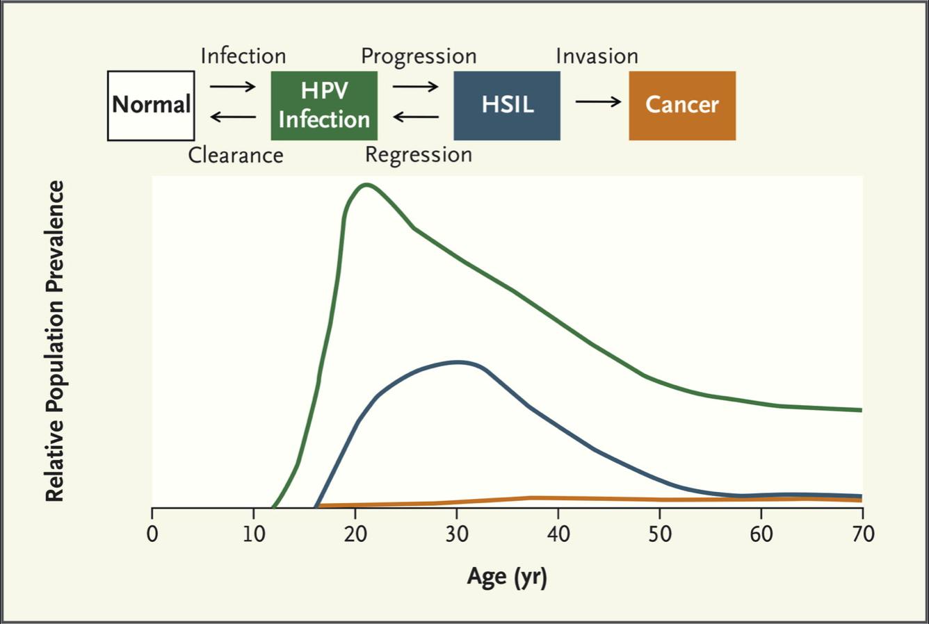 human papillomavirus infection occurrence