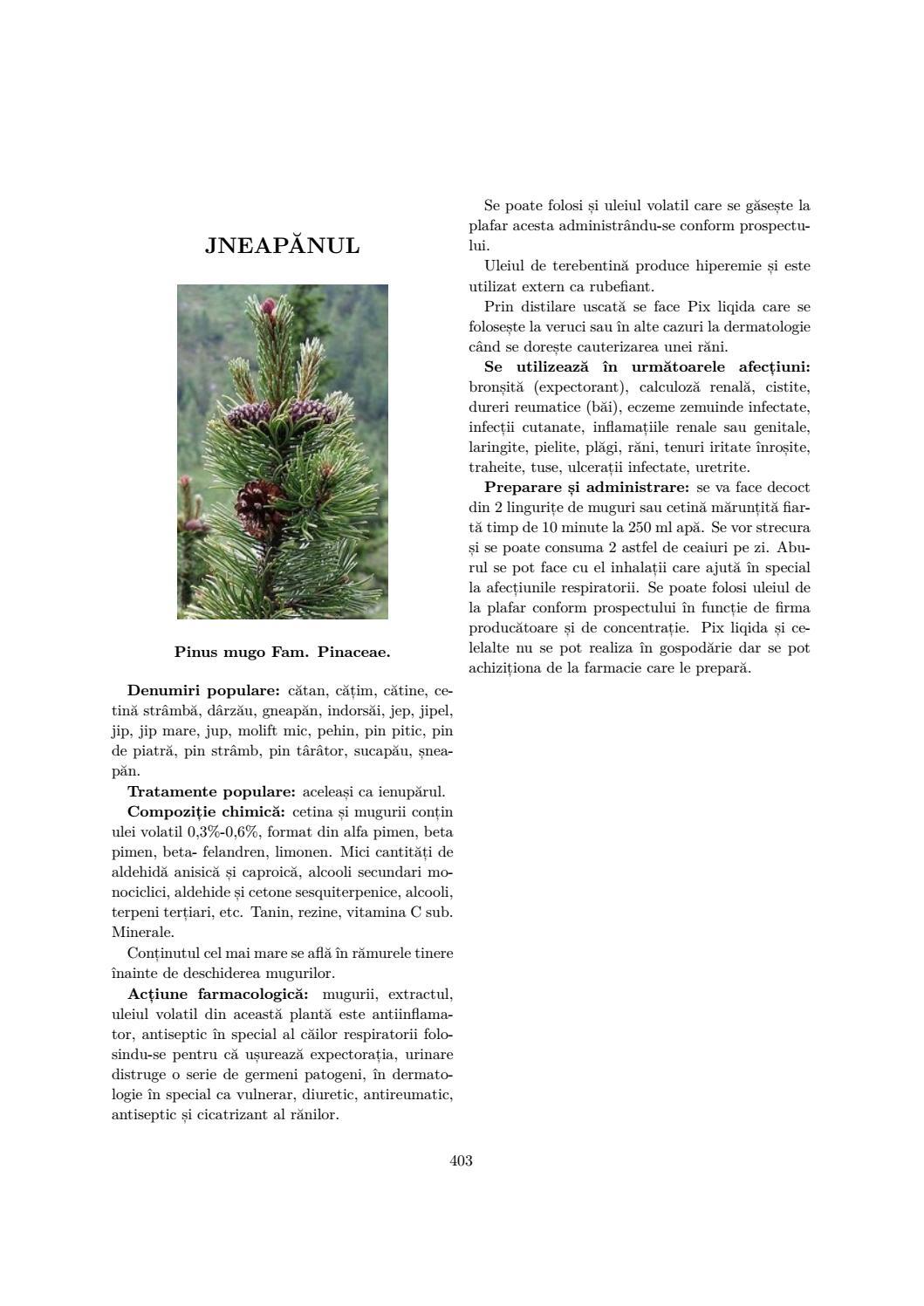terebentină rafinată pentru paraziți giardia eruptii cutánate