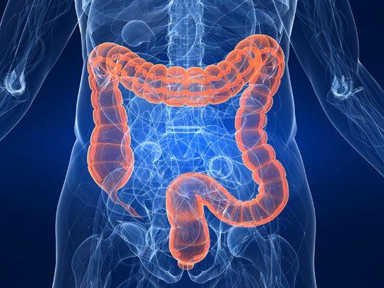 dezintoxică ți colonul