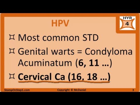 Hpv hsv nedir HPV (Papilomavirusul uman) | Regina Maria - Papilloma virus b19
