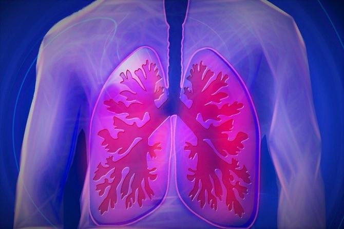 cum să tratezi paraziții din plămânii umani
