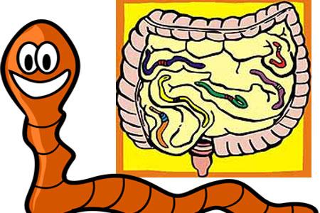 enterobioza este o etapă invazivă la om