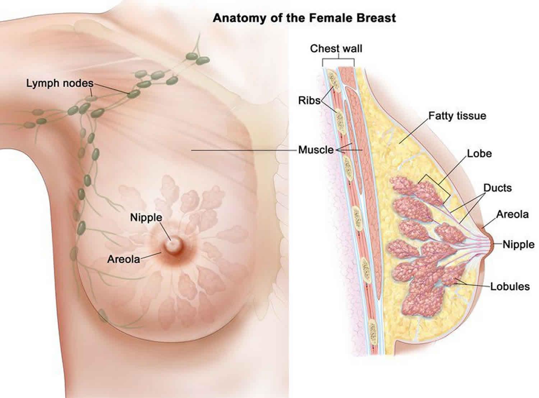 Tumori benigne de sinusuri