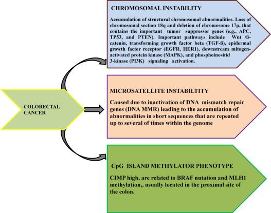 colorectal cancer biomarkers cele mai bune pastile de la viermi