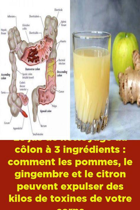 hrana pentru paraziți bacterii gheata kfc
