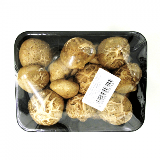 ciuperci shiitake foot wart nerve pain