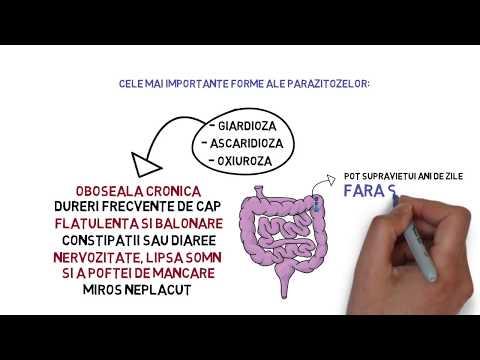 Nutriție prin curățarea antiparazitară a organismului - Ce boli vindecă detoxifierea – Q Magazine