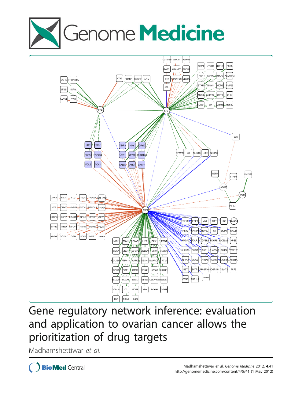 cancer genetic regulatory network