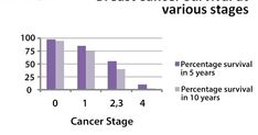 Studiu clinic şi statistic la un lot de paciente cu cancer al sânului
