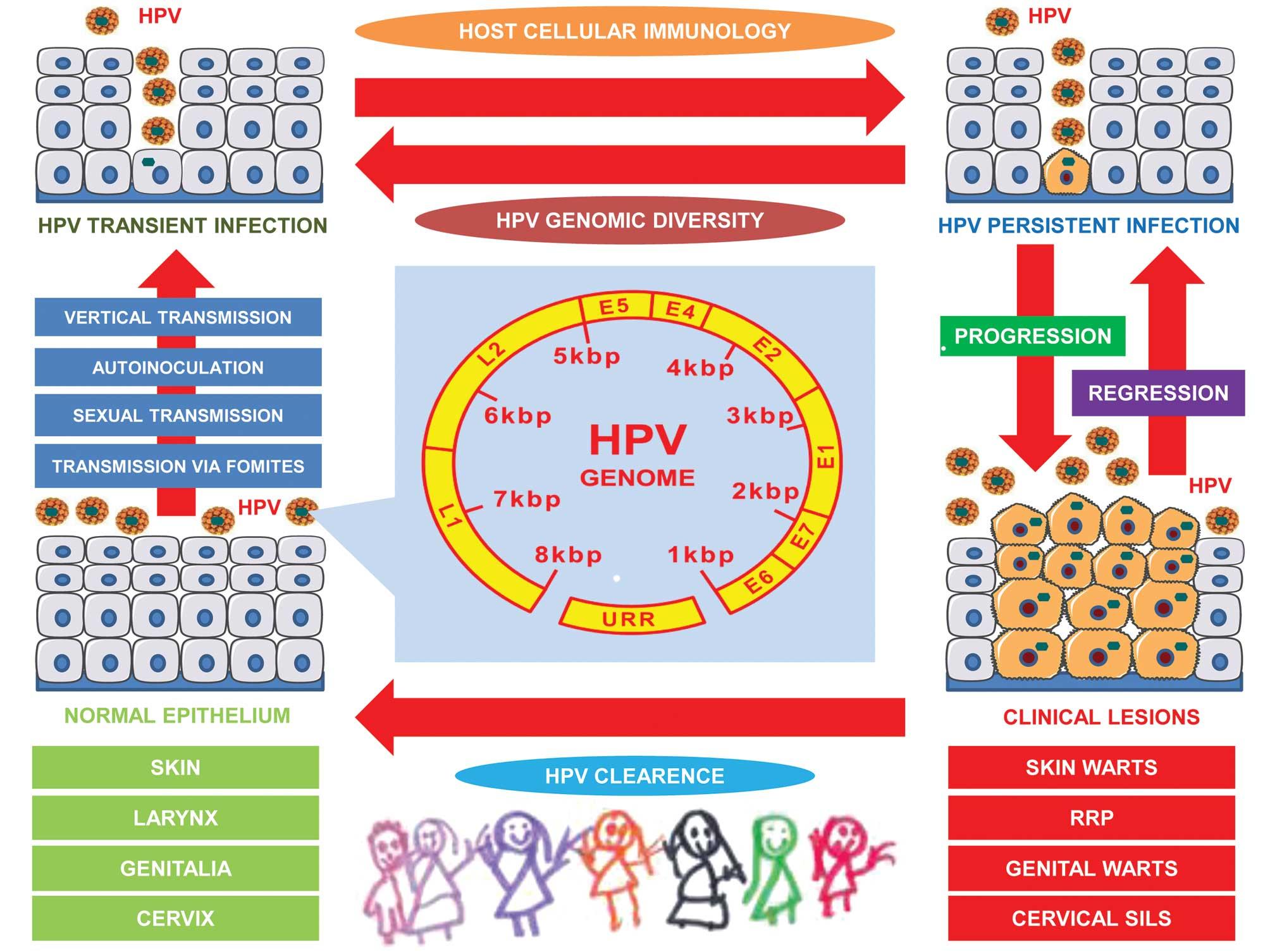 wart virus newborn