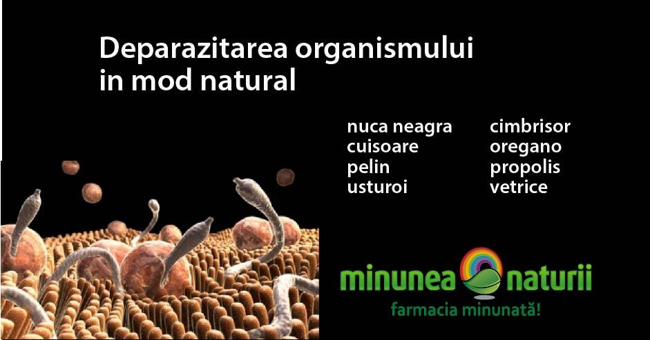 schema de tratament pentru paraziți în organism