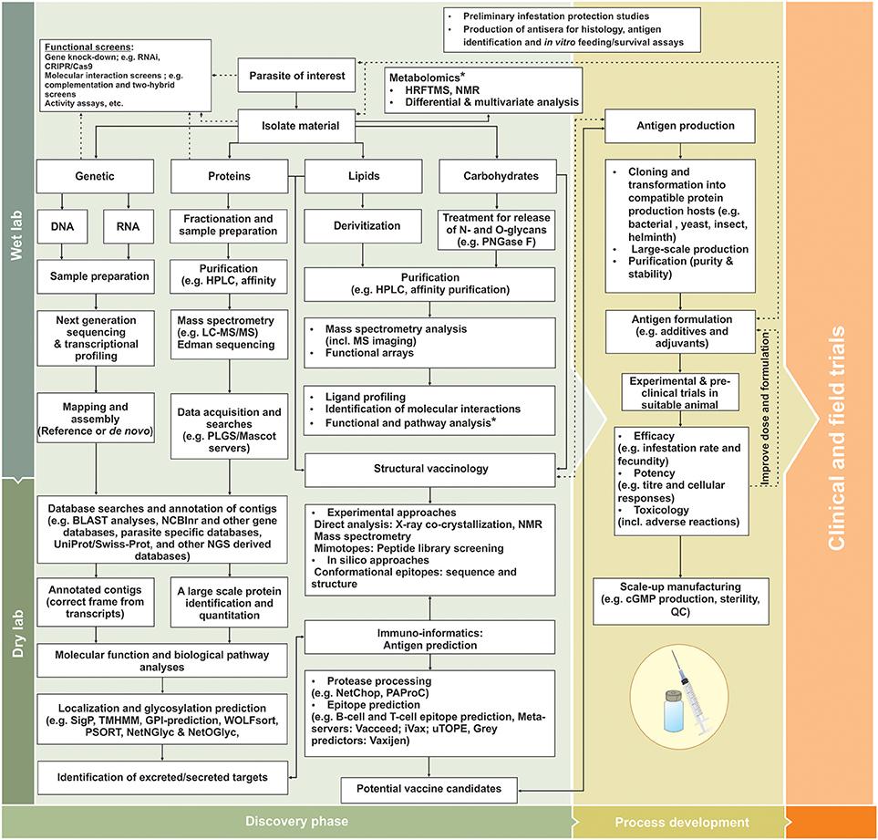 Scleroza multiplă: ce este, cum se diagnostichează și tratează? – Raportul de gardă