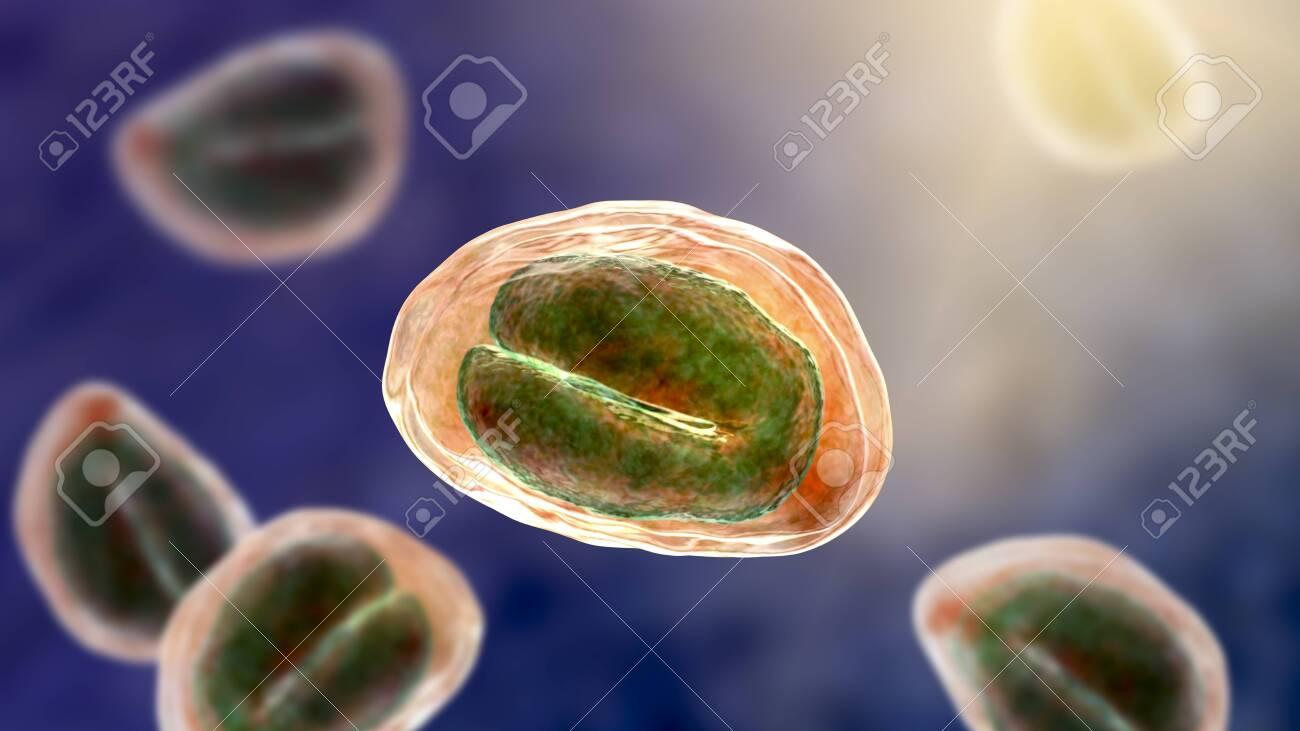 Enterobioza