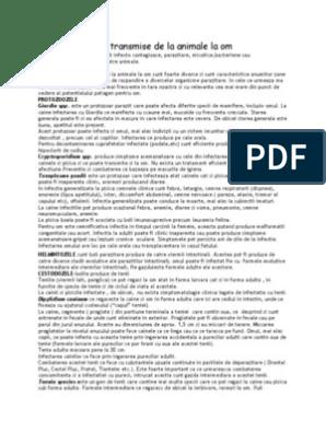 Bernievet - Cabinet veterinar - Determinarea paraziților zoonotici