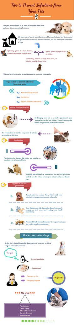 lup infecție giardia medicament cernagilis