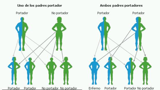 anemie genetica paraziti gliste simptomi
