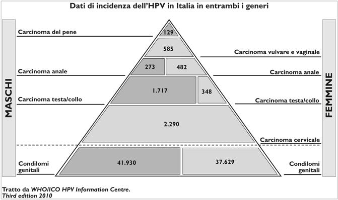 papilloma virus ceppo alto rischio dna papilloma virus positivo