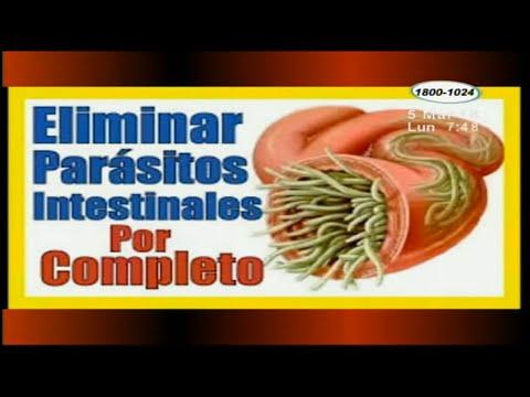 Medicina natural para parasitos oxiuros