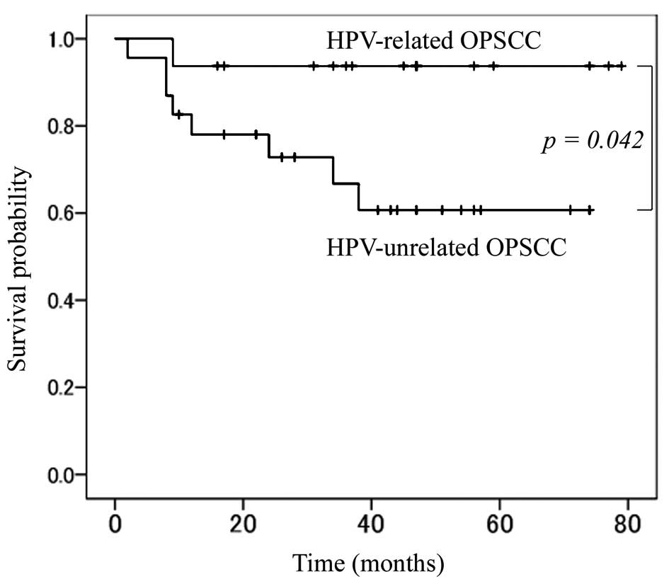 hpv positive oropharyngeal cancer survival rate