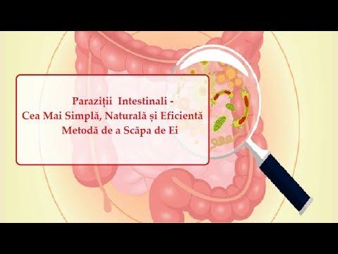 Patogenia, tabloul clinic, diagnosticul şi tratamentul helmintiazelor