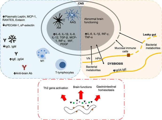 neuroendocrine cancer support groups cancer de prostata ingles