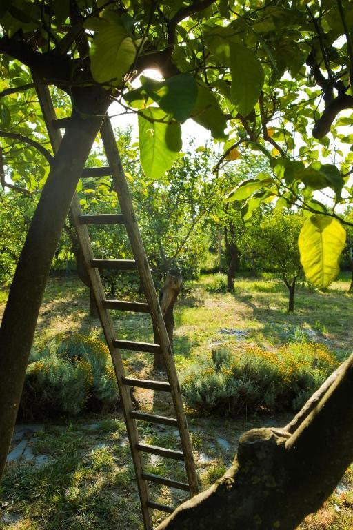 giardini naxos taormina entfernung