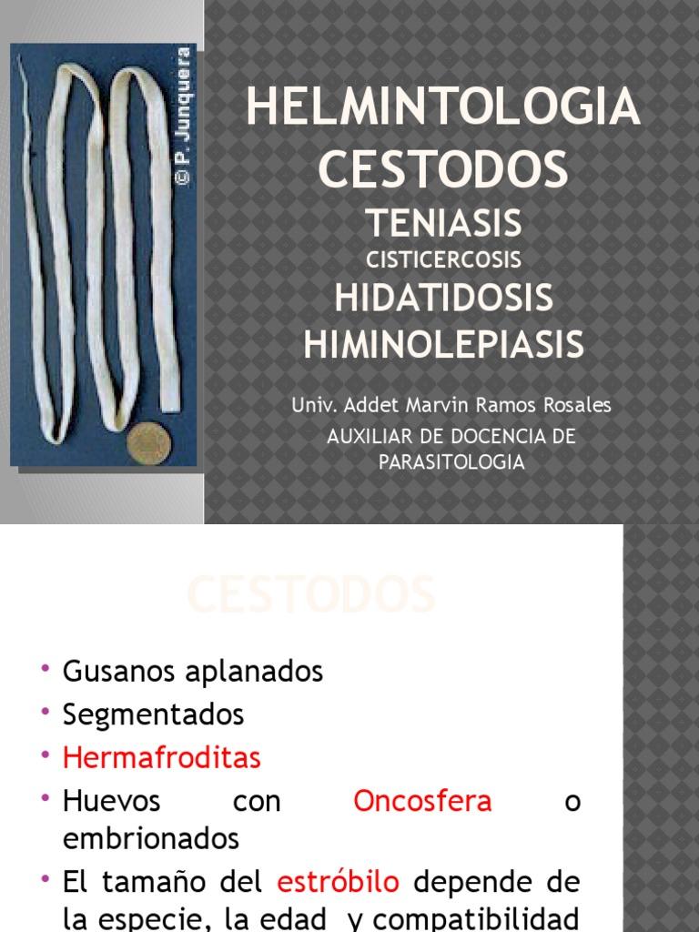 """Ppt helmintologie, Prezentare """"viermi de plat"""". Prezentare viermi ciliari de clasă"""