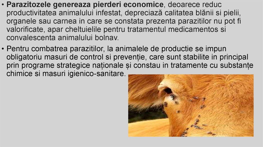 detoxifiant pastile papilomatosis piel humana