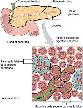 negii genitali au dispărut singuri squamous papilloma larynx treatment