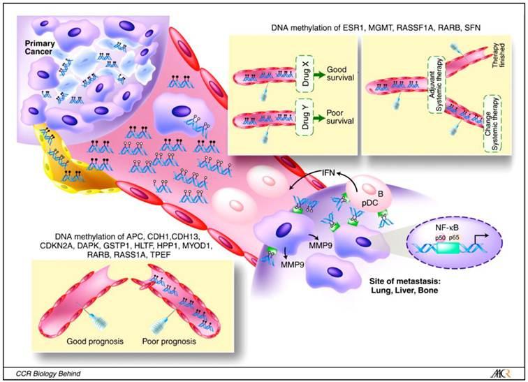 colorectal cancer biomarkers tratamentul verucilor genitale în rect