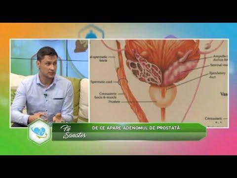 Helmintiaza, Tratament complex pentru helmintiază