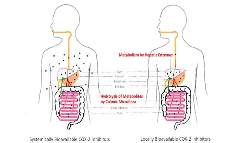 ureaplasma și condiloamele în