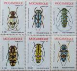 pret 1980 paraziti