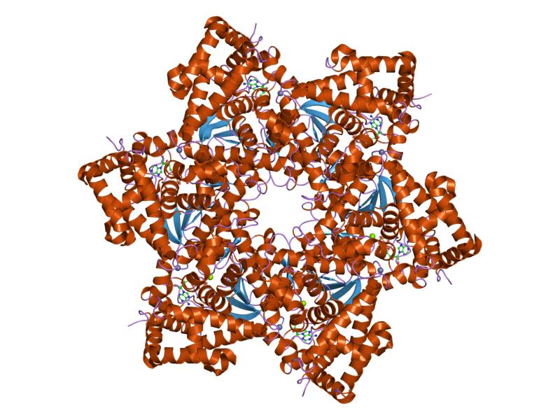 cum să scoți lanțurile human papillomavirus 45