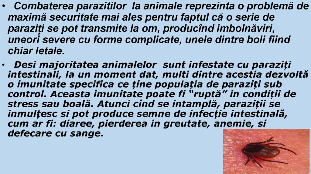 Paraziții intestinali la copii   Arcadia Spitale si Centre Medicale