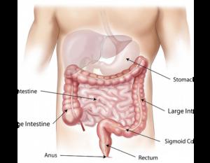 medicamente pentru condilomul vaginal lesiones de papiloma en la boca