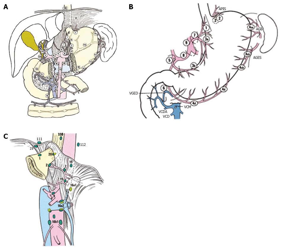 îndepărtați papiloma aluniță instrumente antiglistnoe