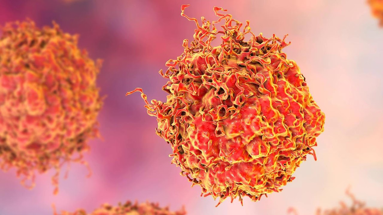 Antigen Giardia - Synevo