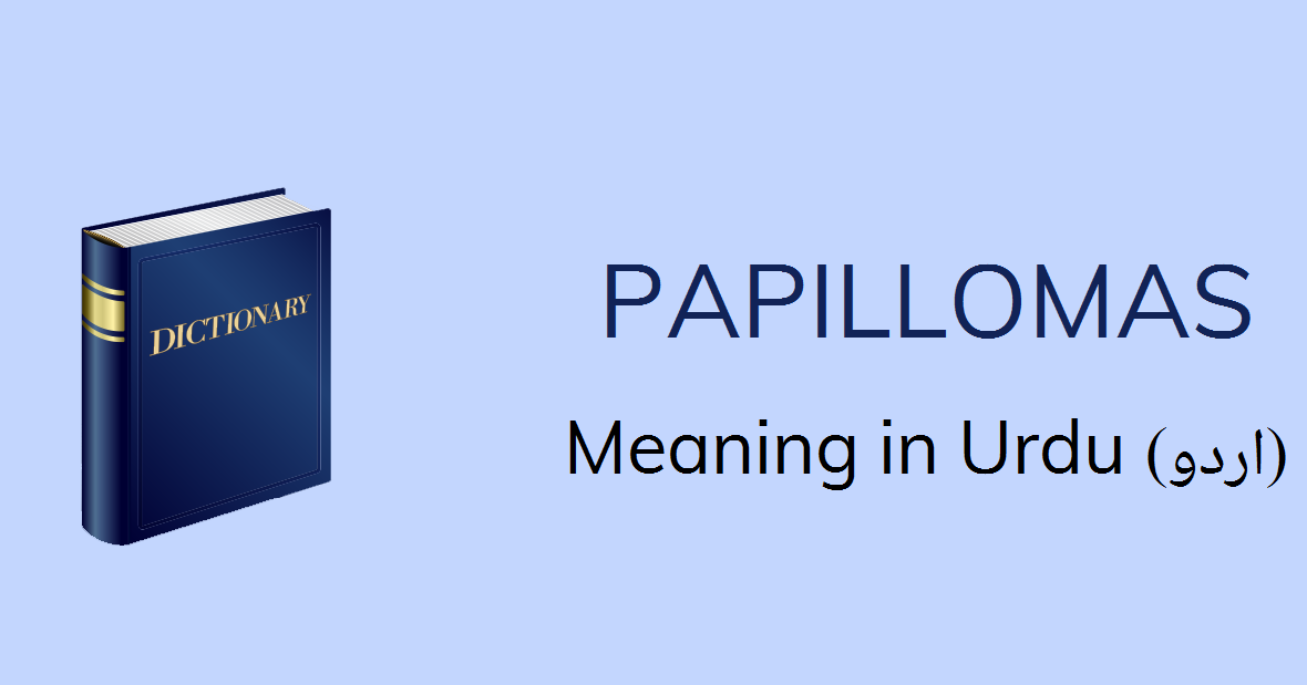 Papilloma meaning of the word