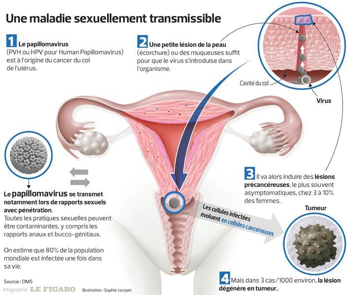 tratament parazit cu ou câți viermi rotunzi trăiesc în corpul uman
