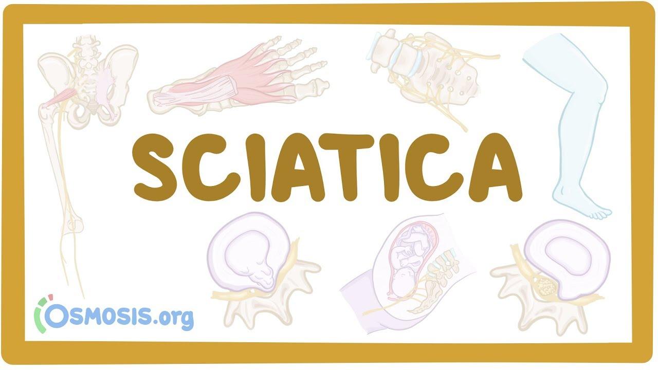 tratamentul tricocefalelor la adulți cancer de prostata ingles