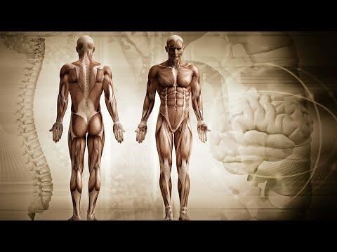 helmintii pot parazita cancer de colon e higado