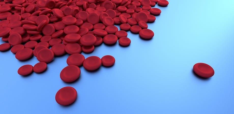 De ce eozinofilele sunt crescute în sânge, ce înseamnă asta? - Anatomie June